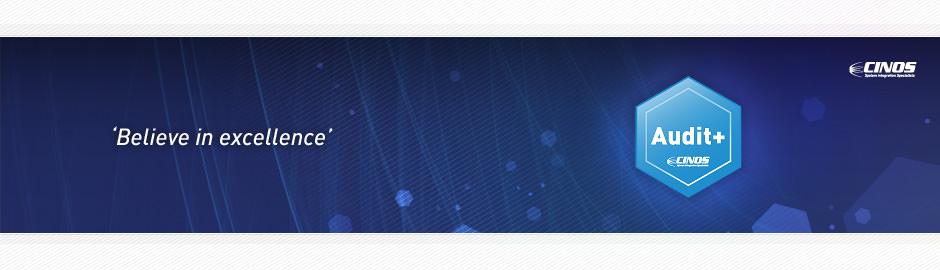 Cinos Audit Plus Services