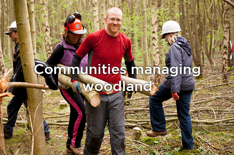 Communities managing woodland