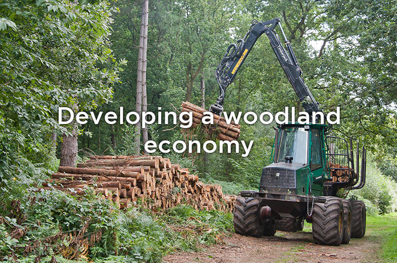 Developing a woodland economy