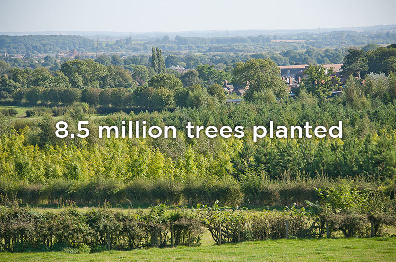 8.5 million trees planted