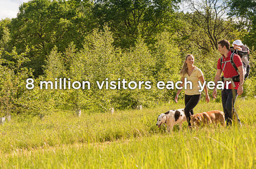 8 million visitors each year